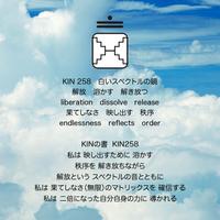 KIN258.png