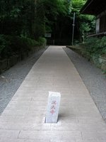 P6080162.jpg